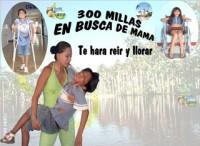 300 millas en busca de mamá (ampliar imagen)