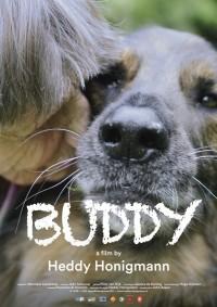 Buddy (ampliar imagen)
