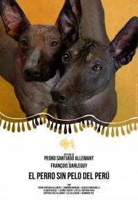 El perro sin pelo del Perú (ampliar imagen)