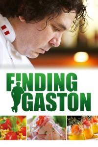 Buscando a Gastón (ampliar imagen)