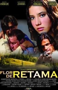Flor de Retama (ampliar imagen)